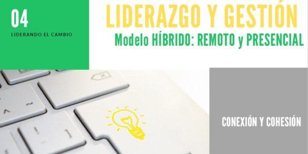 Liderazgo y Gestión Modelo Híbrido